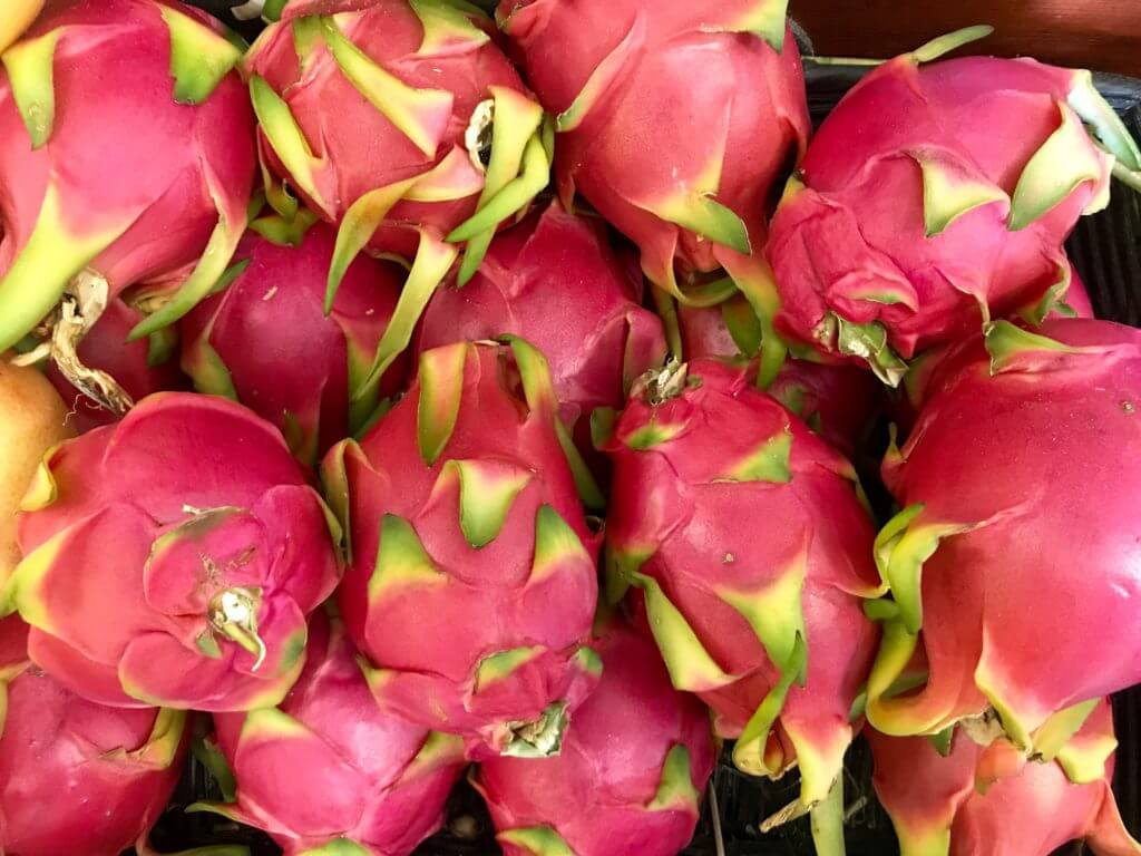 Kamalam is the new name of dragon fruit in gujrat